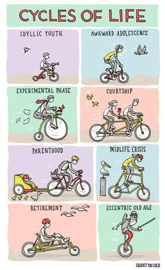 Cycles of life  http://www.letmebike.eu/blog/cycles-of-life/