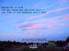 Awakening to pink; the day ahead may end with rain - run free in the paddocks until then. Words and photo by Stephanie Mohan - Oct 2015