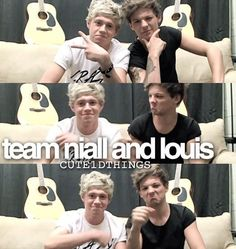 Are u team Niall and Louis or Team Harry Zayn and Liam comment yours.... Im team Niall and Louis (dont you think louis looks like grump cat!?)