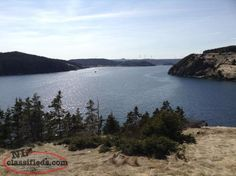 2 Ocean Front Cottages For Sale! Find A Job, Newfoundland, Cabins, Cottages, Real Estate, Boat, Ocean, Water, House