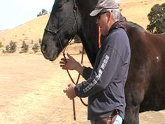 How to connect a Horse lead rope to Rope Halter-Reins - Rick Gore Horsemanship