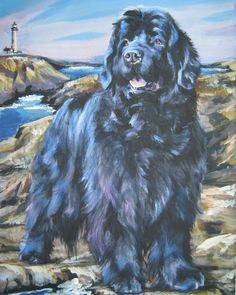 Newfoundland dog art from an original painting by L. - Newfoundland dog art from an original painting by L.Shepard Hand & Bath Towel by thedoglover – - Canvas Art Prints, Fine Art Prints, Canvas Canvas, Dog Artist, Gentle Giant, Dog Portraits, Exotic Pets, Beautiful Creatures, Dogs And Puppies