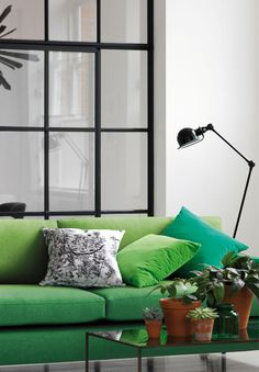 Delcor's Metro Sofa in green Designers Guild fabric, complemented by some potted plans