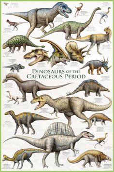 Feathered Dinosaurs II Prints - AllPosters.co.uk