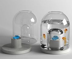 Aquarium by Piergil Fourquié, allows you to change your fish's habitat whenever you like and provide additional interest for your fish. Put whatever you like on the little pedestal and let your fish circle like tiny sharks. Aquarium Design, Home Aquarium, Aquarium Fish Tank, Fish Aquariums, Aquarium Ideas, Unique Fish Tanks, Small Fish Tanks, Cool Fish Tanks, Benjamin Graindorge