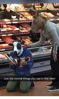 Just wait 'til the horse finds out about what they've been putting in school lunches.