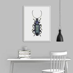 Blue Beetle Print, Beetle Wall Art, Modern Art Print, Insect Print, Blue Jewel Beetle, Insect Wall Art, Blue Bug Poster, Digital Download