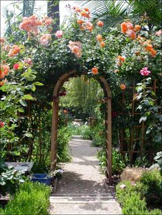A flower arbor will go between the house and the fence and lead into the back yard