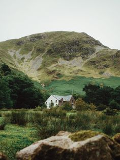 Cottage lost in the green wilderness.