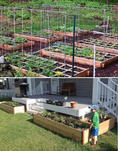 You don't have to move to a farm to grow some of your own food, cut your reliance on the grid, reduce your waste output dramatically and save a whole lot of money.
