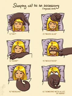 Happens Quite Often To Me Too! » Sleeping Cat as an Accessory - Catsu The Cat » catsuthecat.com