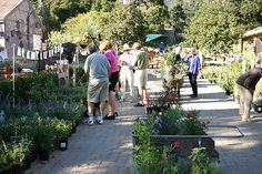 2005 - Annual Fall Plant Sale at the Santa Barbara Botanic Garden www.sbbg.org  Santa Barbara Botanic Garden Image Library