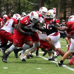 Arizona Cardinals Darnell Dockett rushes the passer