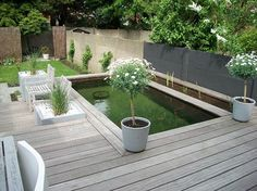 Pond with decking at different levels. The two trees could be your olive trees!