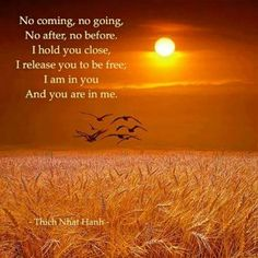 No coming, no going, No after, no before. I hold you close. I release you to be free. I am in you And you are in me ☼ Thich Nhat Hanh Buddhist Quotes, Spiritual Quotes, Wisdom Quotes, Quotable Quotes, Memorial Poems, Thich Nhat Hanh, Stress, Spiritual Awakening, I Am Awesome