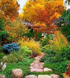 Glorious fall garden path