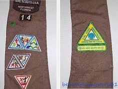 GIRL SCOUTS U.S.A. NORTHWEST FLORIDA 90s BROWNIE SASH WITH 1 PIN 12 PATCHES