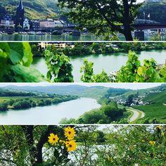 Wine, Beer and Hiking boots in Bernkastel-Kues, Germany 🇩🇪! Grape Picking, Traditional German Food, Beer Calories, The Good German, Harvest Season, Flight And Hotel, German Beer, Beer Garden, Wine And Beer