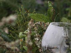 Sank naturmaterialer til dekorasjoner - Moseplassen Plants, Plant, Planets