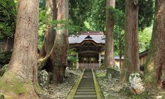 Experience Zen practice at Eihei-ji Temple, the home of Zen