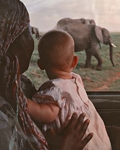Today is 🐘 World Elephant Day, Best Part Of Me, Kenya, Of My Life, Learning, Animals, Instagram, Animales, Animaux
