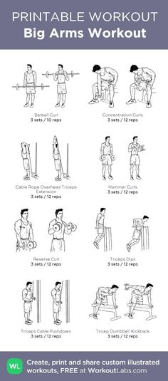 Big Arms Workout: my custom printable workout by @WorkoutLabs #workoutlabs #customworkout: Big Arm Workout, Lose Fat Workout, Biceps Workout, Sport Fitness, Mens Fitness, Fitness Tips, Fitness Dvd, Fitness Foods, Workout Fitness