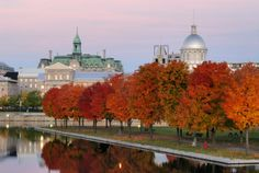 Montreal Canada October may be one of the most loveliest months to visit Montreal.... Shawn Frank