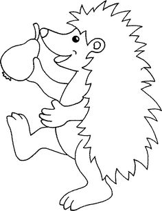 Hedgehog coloring pages