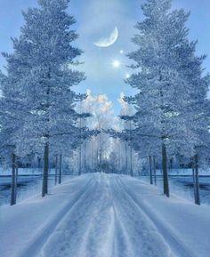 Best Earth Pics on – – Winterbilder Winter Magic, Winter Snow, Winter Night, Winter Photography, Nature Photography, Photography Trips, Foto Picture, Beautiful Winter Scenes, Beautiful Winter Pictures
