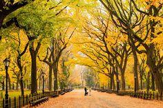Daily Dozen for Nov. 27, 2015 — Photos -- National Geographic Your Shot