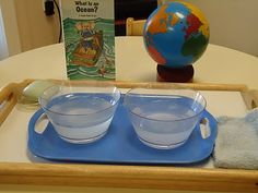 DIY Montessori saltwater and freshwater science geography experiment, from the To The Lesson! blog.