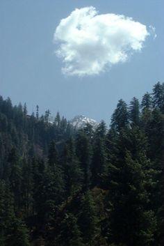 Tirthan, Himachal Pradesh, India