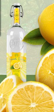 360 Sorrento Lemon #360vodka 360 Vodka, Lemon Vodka, Sorrento, Sparkling Ice, Cocktail Recipes, Orange, Drinks, Bottle, Drinking