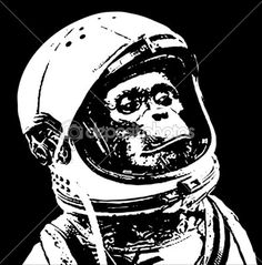 """Closer to what I am looking for but different animal. """"Astronaut chimp"""""""