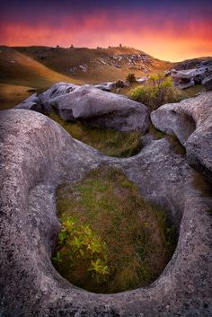 CASTLE HILL - SOUTH ISLAND, NEW ZEALAND.