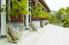 planters | Flickr - Photo Sharing!