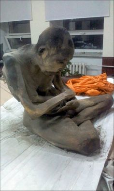 200 year old Buddhist monk found mummified in lotus position