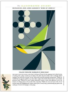 The Illustrated Aviary, from Audubon magazine. Art director: Kevin Fisher, illustrator: Greg Mably. See more pages of the Illustrated Aviary here: http://www.robertnewman.com/audubon-magazines-illustrated-aviary/