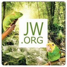 tj-archivo.org