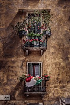 Venice Windows by winstonoboogie