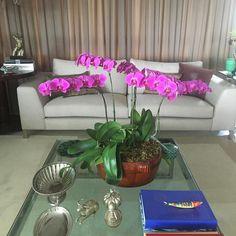 Hoje minha mesa está assim flores e coresVida! Tudo que me alegra. @espaco670 @gilamarante @marcio_wells @marcossesteves