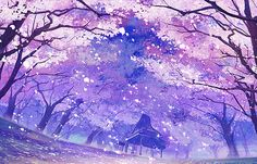 anime cherry blossoms | scenery #anime scenery #game scenery #cherry blossom #ピアノの森 ...