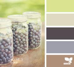 design seeds - with a little warmer blue