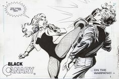 Black Canary by Trevor Von Eeden and Dick Giordano.