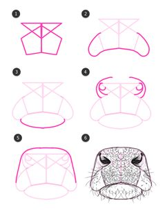 With some alterations, these steps could be of human nose and lips