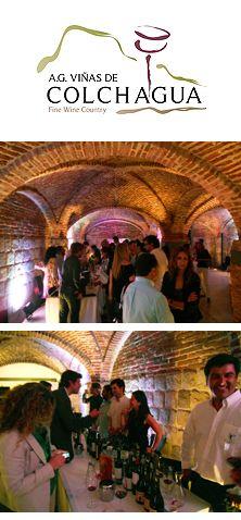 http://www.todovinos.cl/reportajes/4920-los-nuevos-vinos-de-las-vinas-de-colchagua
