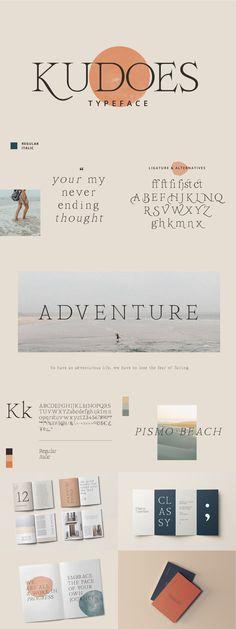 The Modern Serif Font Bundle — Pixel Surplus | Resources For Designers Modern Serif Fonts, Sans Serif Fonts, Photoshop Illustrator, Adobe Photoshop, Font Packs, Wedding Fonts, Typography Design, Tropical Design, Microsoft Word