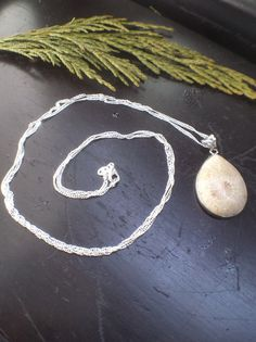 Fossilized Coral Necklace Handmade Art And Jewelry by WildFernArt