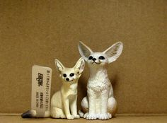 Eikoh and Yowie - fennec foxes