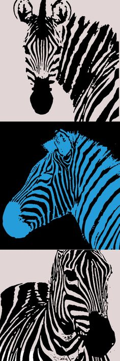 Why is the zebra our mascot? Doctors are sometimes taught, When you hear hoofbeats, think of horses, not zebras. The term zebra has become slang for an unusual medical diagnosis when a common explanation is more likely. Today, carcinoid cancer and neuroendocrine tumors are considered rare and thought of as zebras. Visit www.Carcinoid.com for more.